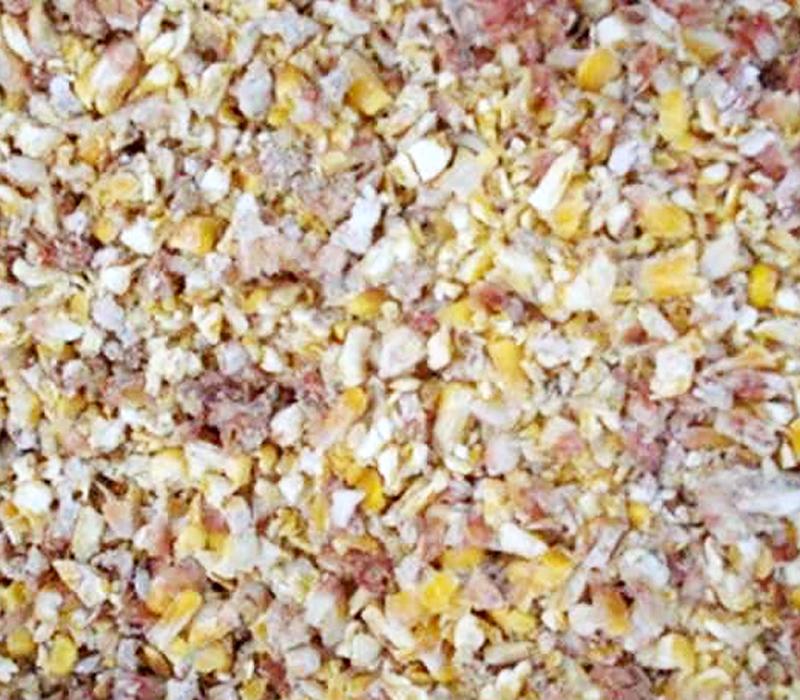 Corn Screening