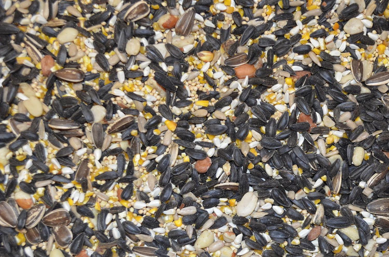 Deluxe blend wild bird seed.