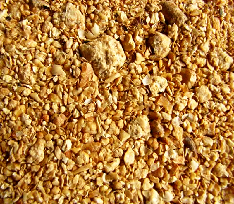 soybean meal for feed